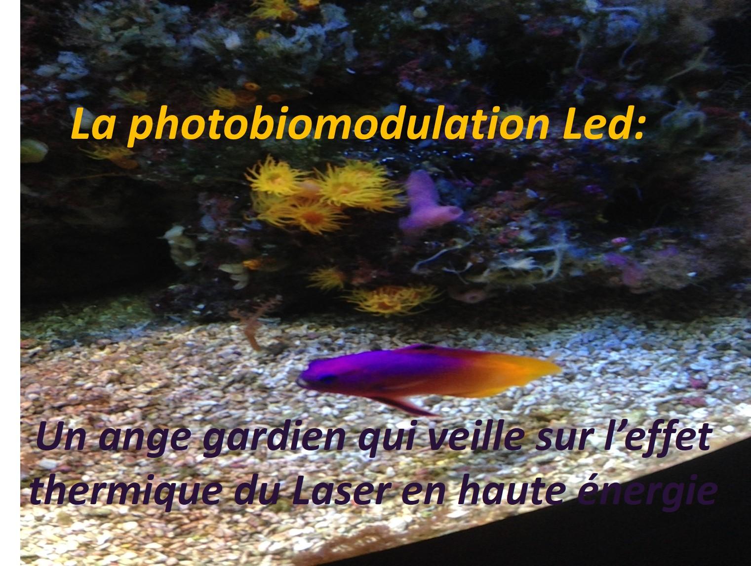 La Photobiomodulation Led: Un ange gardien qui veille sur l'effet thermique du Laser en haute énergie - DR Pablo NARANJO