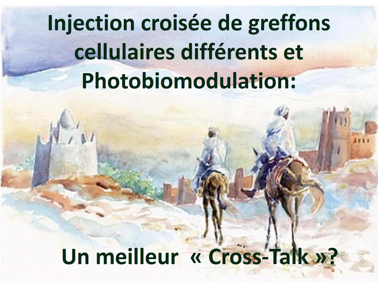 DR FERLAUD 1607