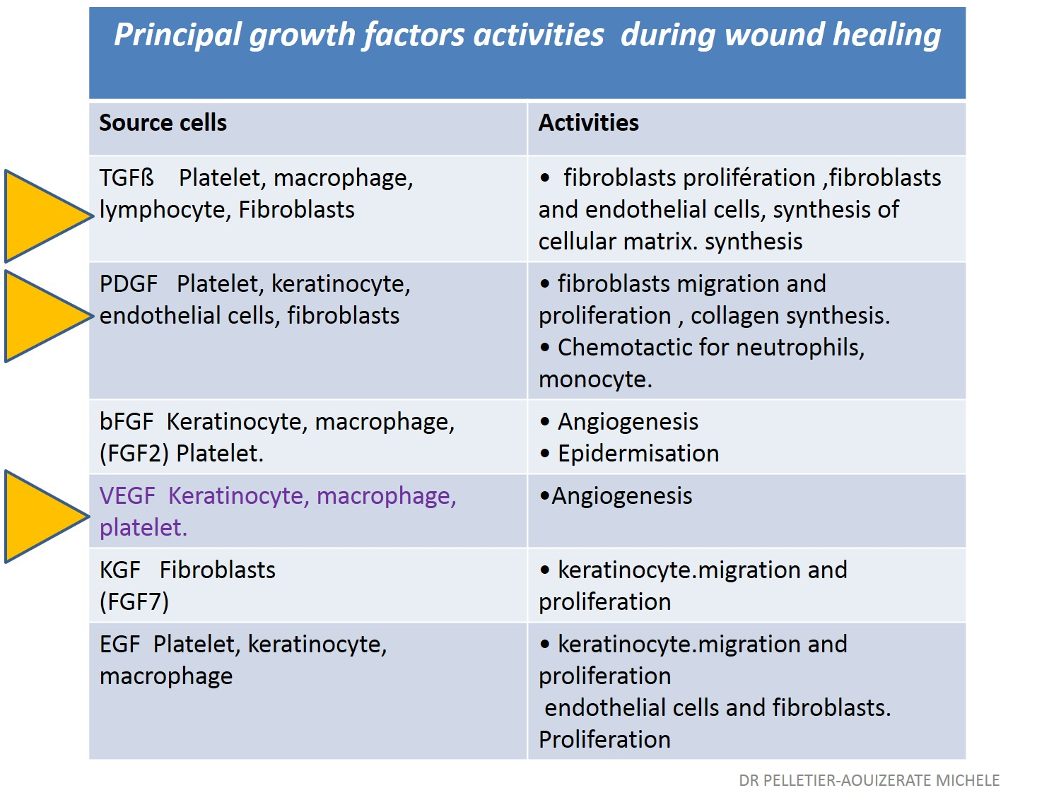 Critical Role of Transforming Grouth Factor Beta in Different Phases of Wound Healing