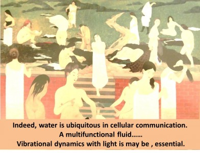 Effects of light on the dynamic potential of water.  WUNSCH  Alexander  MD