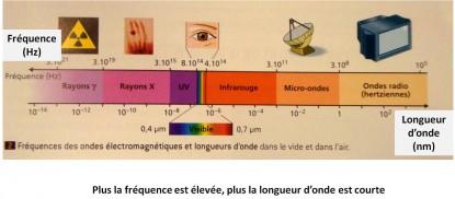 schéma 6: correspondance entre fréquence et longueur d'onde -relationship between frequency and wavelength / La hertz représente donc un nombre d'oscillations par seconde ou plus généralement le nombre de répétition d'un phénomène périodique pendant