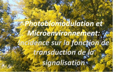 Microenvironment Dependent Photobiomodulation on Function-Specific Signal Transduction Pathways