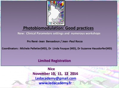 Form Nice European Led Academy 10  11  12 nov 2016